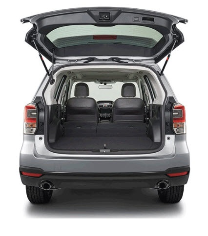 Forester Cargo 2