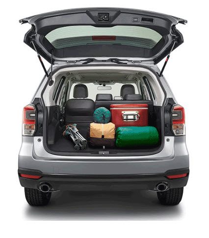 Forester Cargo 3